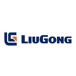 Zmg – Liugong – Bonificado